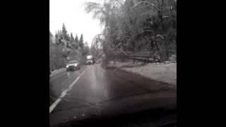 Рогачевское шоссе 11.11.16
