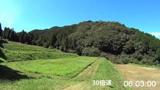 乗用草刈機での草刈り 筑水キャニコム CM220 1000MASAO
