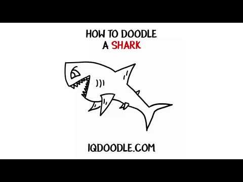 How to Draw a Shark (drawing tips)