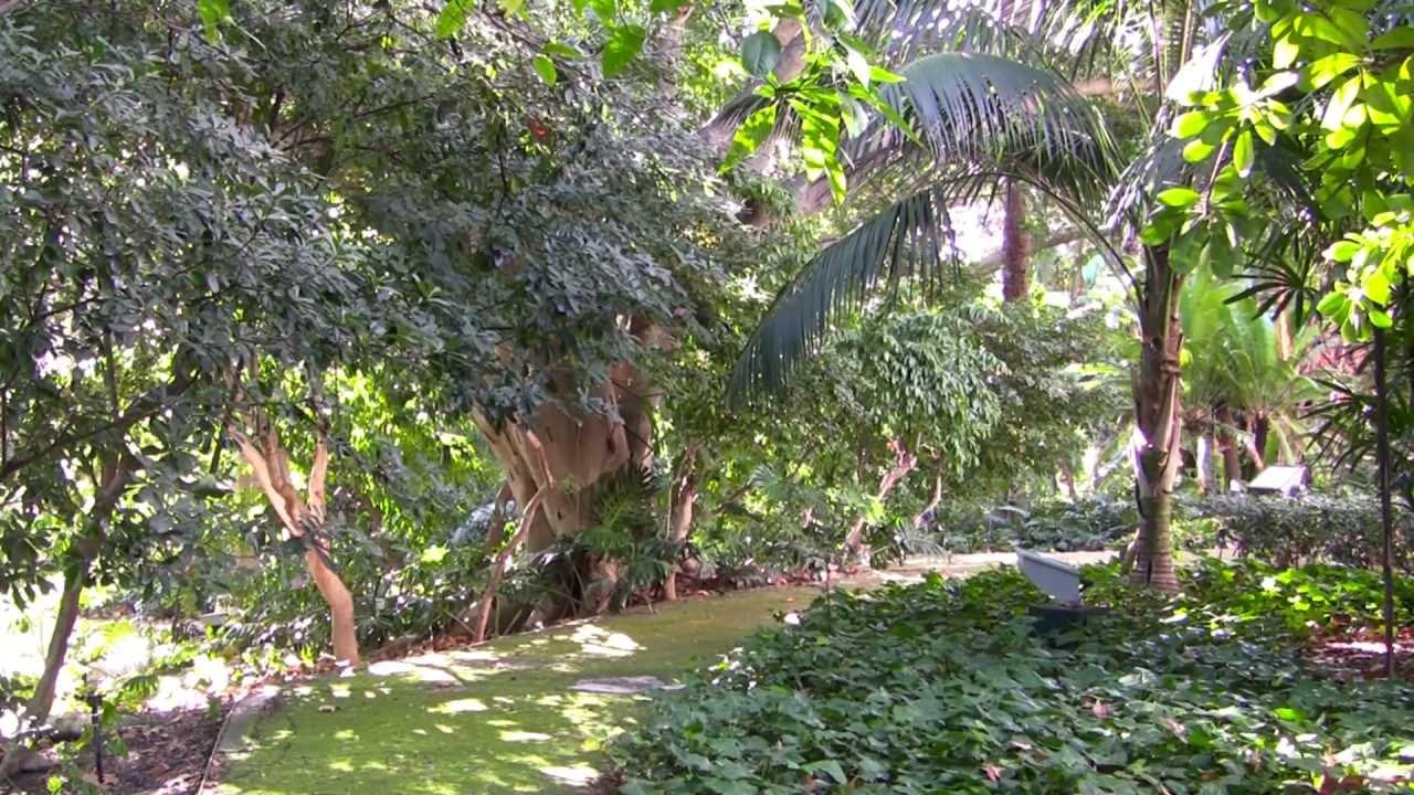 Jardin Botanico Historico La Concepcion Malaga Youtube