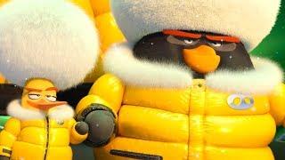 Высадка на остров | Angry Birds в Кино 2