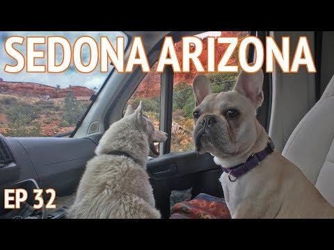 Van Life With 2 Dogs?   EP 32 Camper Van Life