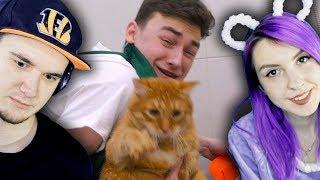 Брайн Мапс ► Мою своего кота *ЧТО-ТО ПОШЛО НЕ ТАК* (TheBrianMaps) | Реакция