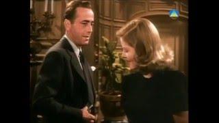The Big Sleep  1946, Howard Hawks (Color Scene)  Humphrey Bogart