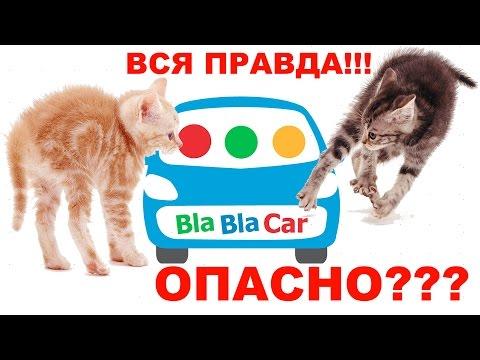 BlaBlaCar - вся правда! Отзыв члена сообщества о сервисе: можно ли верить?..