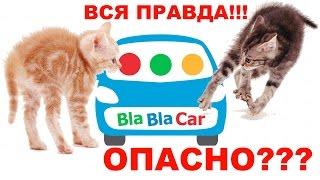 МОШЕННИКИ В BlaBlaCar / как разводят в бла бла каре / блаблакар