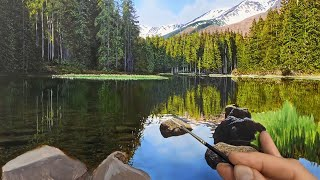 Lake Reflections Oil Painting  Time Lapse  Episode 175