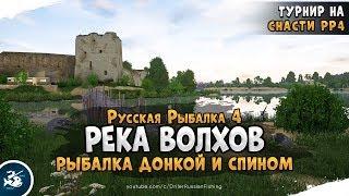 Фарм на реке Волхов Русская Рыбалка 4