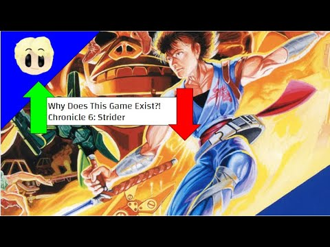 Why Does This Game Exist?! Chronicle 6: Strider |