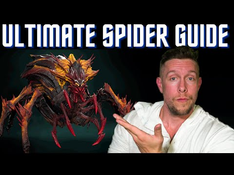 HOW TO BEAT THE SPIDER: BEST TEAMS & CHAMPIONS