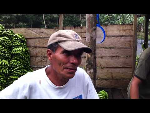 Indigenous Community Development International - Microlending