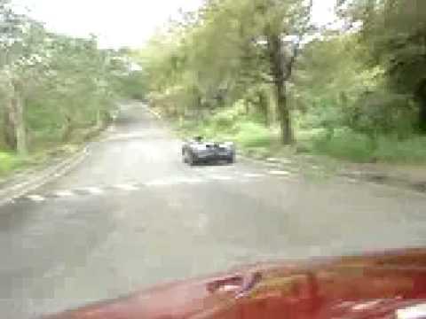 vw beetle chasing Spyders
