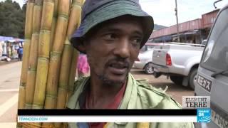 Éthiopie : le défi vert