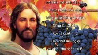 Chúa Là Cây Nho (Lm Ân Đức) - Ca đoàn Ngôi Ba