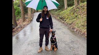 Pittsburgh Dog Whisperer Trains a Fear Reactive 6 Month Doberman