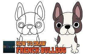 How to Draw French Bulldog | Art Tutorial Easy Step by Step