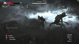 Wiedźmin: Dzika Mgła #39