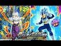 Transcending the Limits! F2P Team vs SSB Evolution Vegeta Super 2: DBZ Dokkan Battle