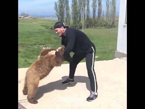 Новый соперник Хабиба НУРМАГОМЕДОВА: Медведь - как спарринг партнер!