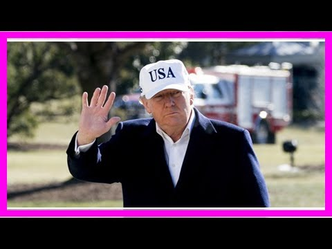 Katie Pavlich - West African: Trump is Right, Africa is a Continent of Sh*t By Channel News Of The