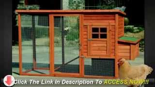 Tips To Build A Chicken Coop