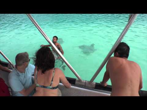Moorea 2015 - Whale Watch #thebethlems