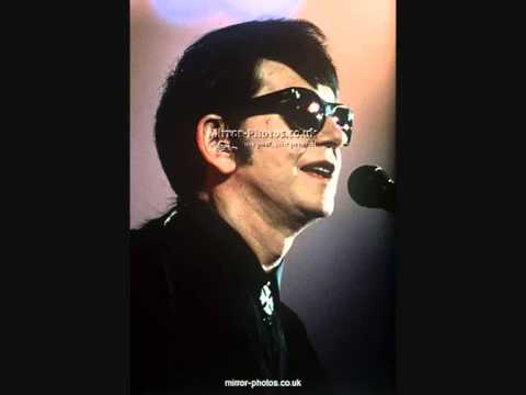 Roy Orbison - (All I Can Do Is) Dream You mp3