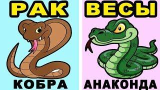 Какая Ты Змея по Знаку Зодиака? Змеиный Гороскоп Раскроет Все Твои Тайны!