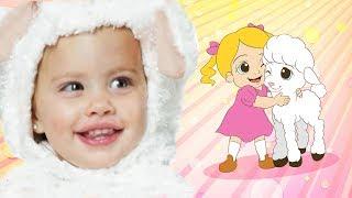 Mary Had a Little Lamb | WigglePop