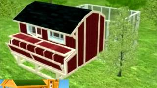 How To Build A Chicken Coop - A 3d Model Look Inside Of A Chicken Coop !!!