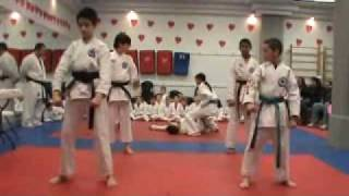 TKA Demo team (Jan 30, 2010)