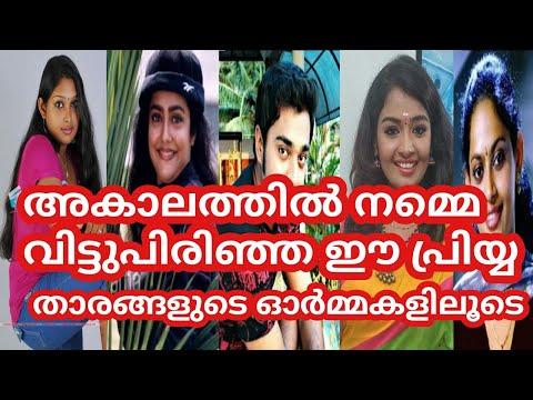 Serial Actors - Rememberance- Reha Mohan -Sabarna Anand -Sarath Kumar  Mayoori - Shilpa - Malayalam