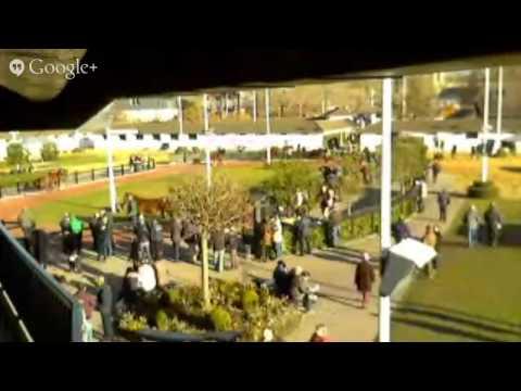 France Sire TV - Vente Arqana