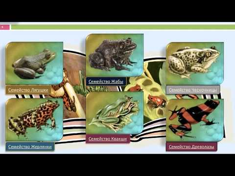 Окружающий мир 3 класс ч.1, тема урока 'Разнообразие животных', с.87-93, Школа России.