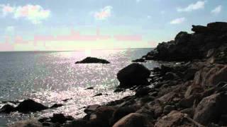 Benjamin Frankel, Symphony no.5 (1/2)