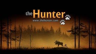 theHunter - Poradnik - Nawoływanie oraz tropienie spłoszonych zwierząt