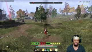 "ESO 1VX PVP STAMPLAR ""KINGPLAR"" BUILD IN ACTION"