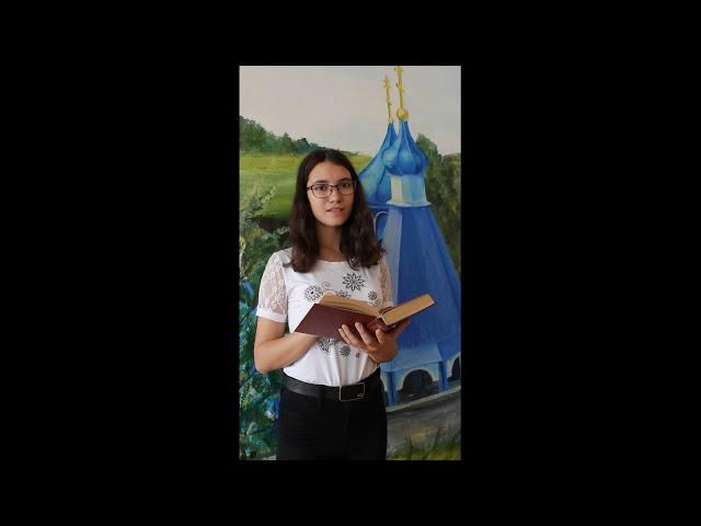 Изображение предпросмотра прочтения – ИринаАлешкина читает произведение «Старик» И.С.Тургенева