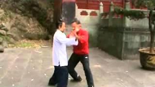 Kung Fu Lupi Grigi, viaggio/studio Taiji, Tai Chi, in Cina (Pechino-Shaolin-Wudang)