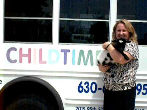 Call 815-600-6464 / Mobile, Traveling Petting Zoo Chicago, Chicagoland, Illinois, Animal Rental