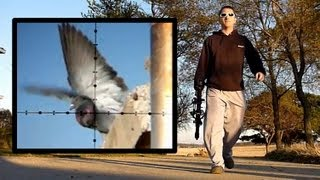 Repeat youtube video Air Rifle Pigeon Hunting Slow-Motion (Nov 4, 2010)