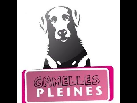 Gamelles Pleines (asso) - i4animal webinaire 7 juin 2019