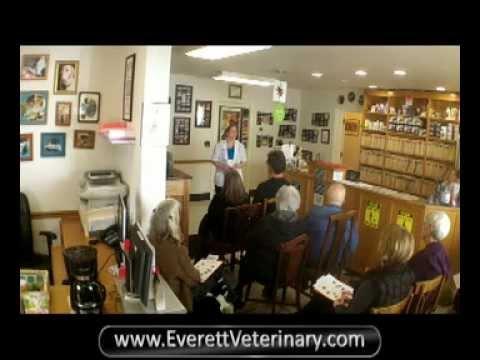 Everett EZ Wellness Seminar: Health Nutrition Cat Without Teeth