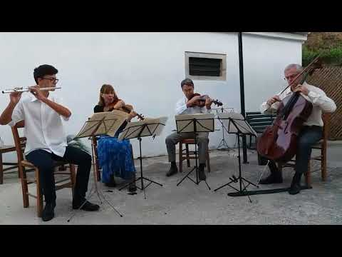Mozart flute quartet no. 1 in D major K.283