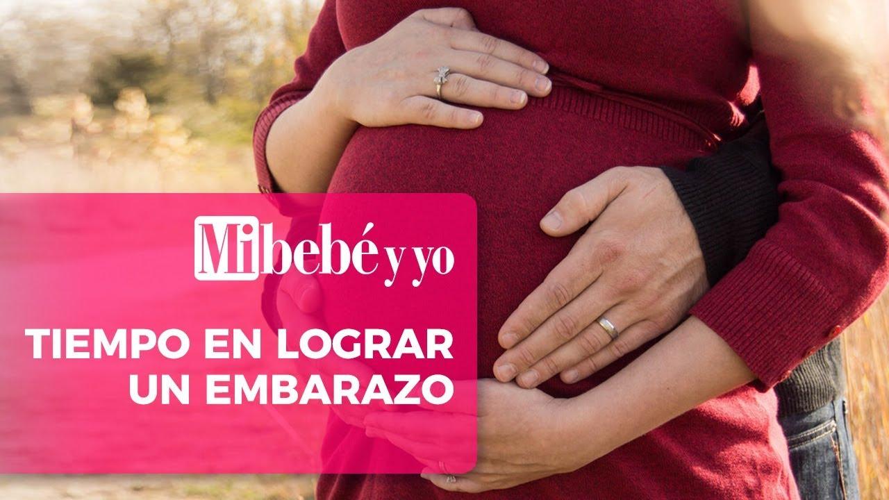 a los cuantos dias te quedas embarazada
