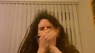 Slow Blues in D - solo harmonica