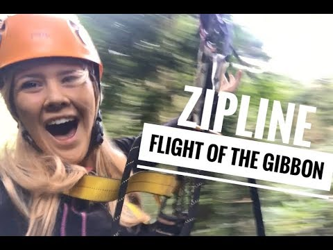 A PLACE YOU MUST VISIT | Chiang Mai Zipline - Flight Of The Gibbon | PEPII7