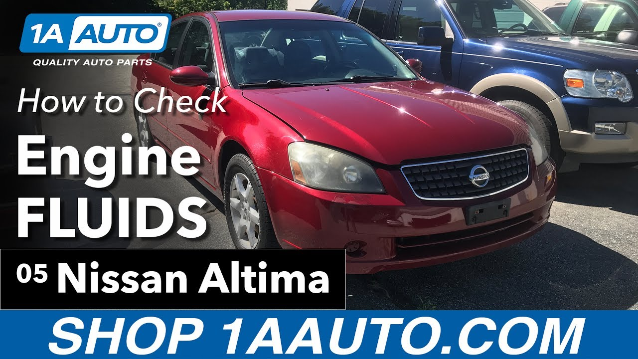 hight resolution of how to check engine fluids 02 06 nissan altima