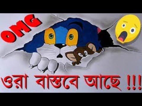 বাস্তবের টম অ্যান্ড জেরি || Real Life Tom And Jerry || 2019