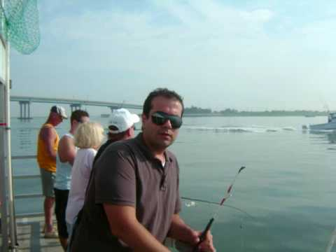 Blue fishing miss belmar nj youtube for Miss belmar fishing report